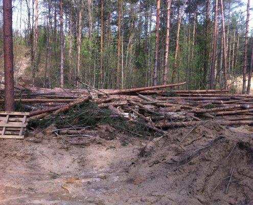 Разработка участка СПб перед началом строительства